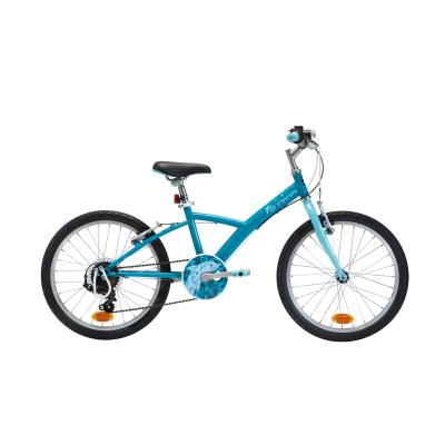 Bicicletă Polivalentă 120